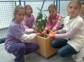 2011_10_03_dned_ekologija_i004