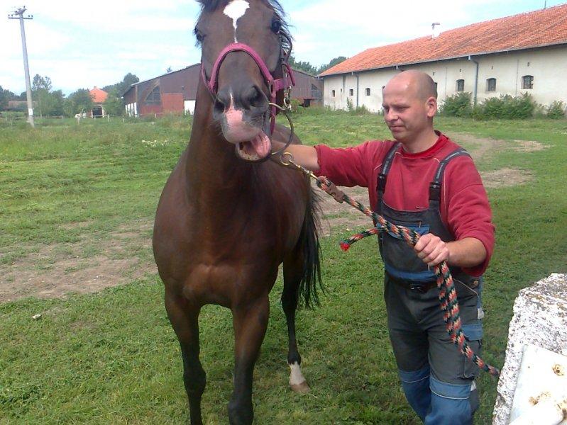 2012-06-06-1-ljubicevo_09
