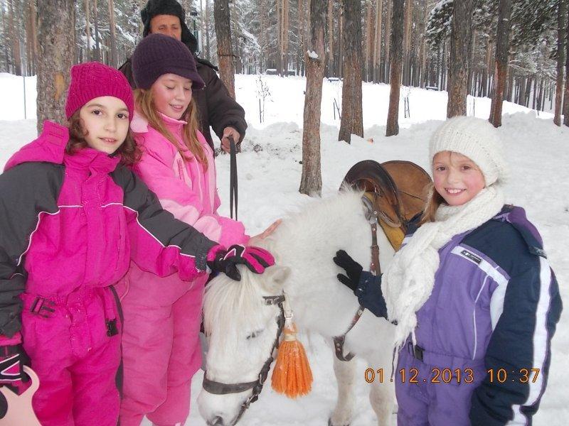 2013-12-01-zlatibor-068