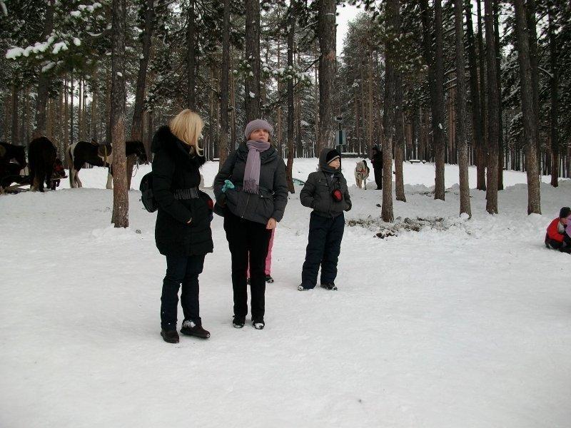 2013-12-01-zlatibor-075
