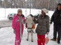 2013-12-01-zlatibor-092