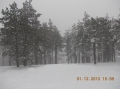 2013-12-01-zlatibor-115