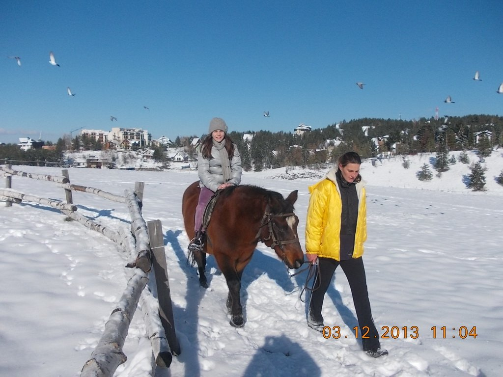 2013-12-03-zlatibor-082