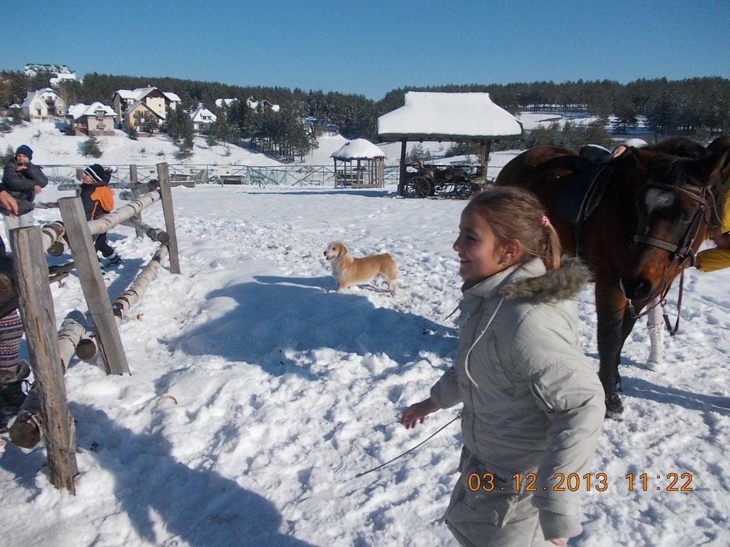 2013-12-03-zlatibor-109