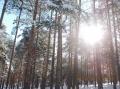 2013-12-03-zlatibor-022