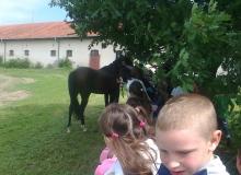 2012-06-06-1-ljubicevo_08