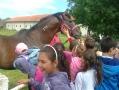 2012-06-06-1-ljubicevo_12